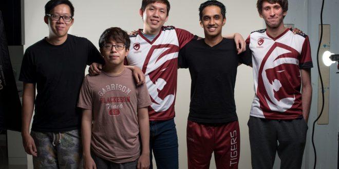 team tigers
